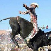 "Acrópolis será sede del ""Torneo Nacional de toros de reparo a lazo"""