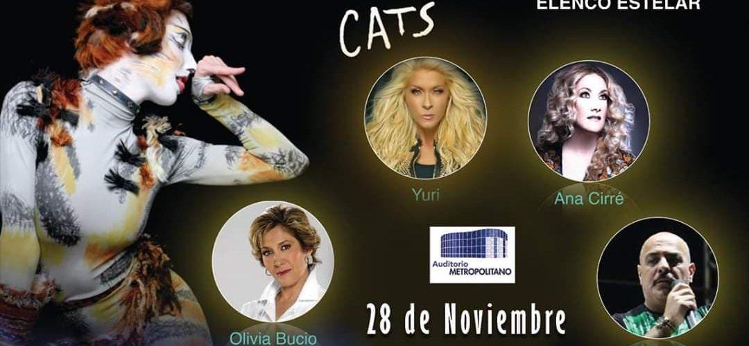 """""""Cats"""": miércoles 28 de noviembre, 19:00 y 21:30 horas, Auditorio Metropolitano."""