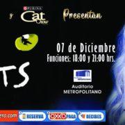 CATS EL MUSICAL LLEGA A PUEBLA