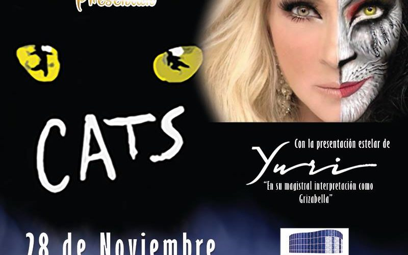 Con una megaproducción, Cats llega a Puebla el dia de mañana
